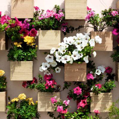8 sencillos pasos para hacer un jardín vertical con palets