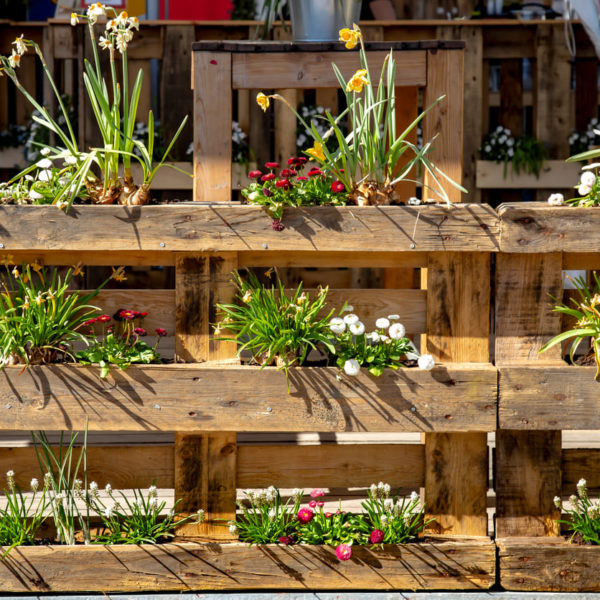 ¿Cómo hacer un jardín vertical con palets?