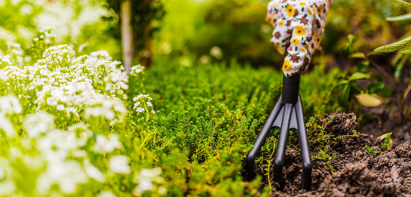 tipos de herramientas de jardinería que hay
