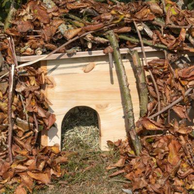 Cómo construir una casa para erizos en tu jardín