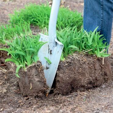 trucos jardinería