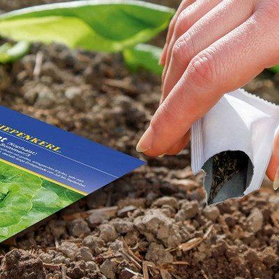 Los mejores trucos de jardinería para abril