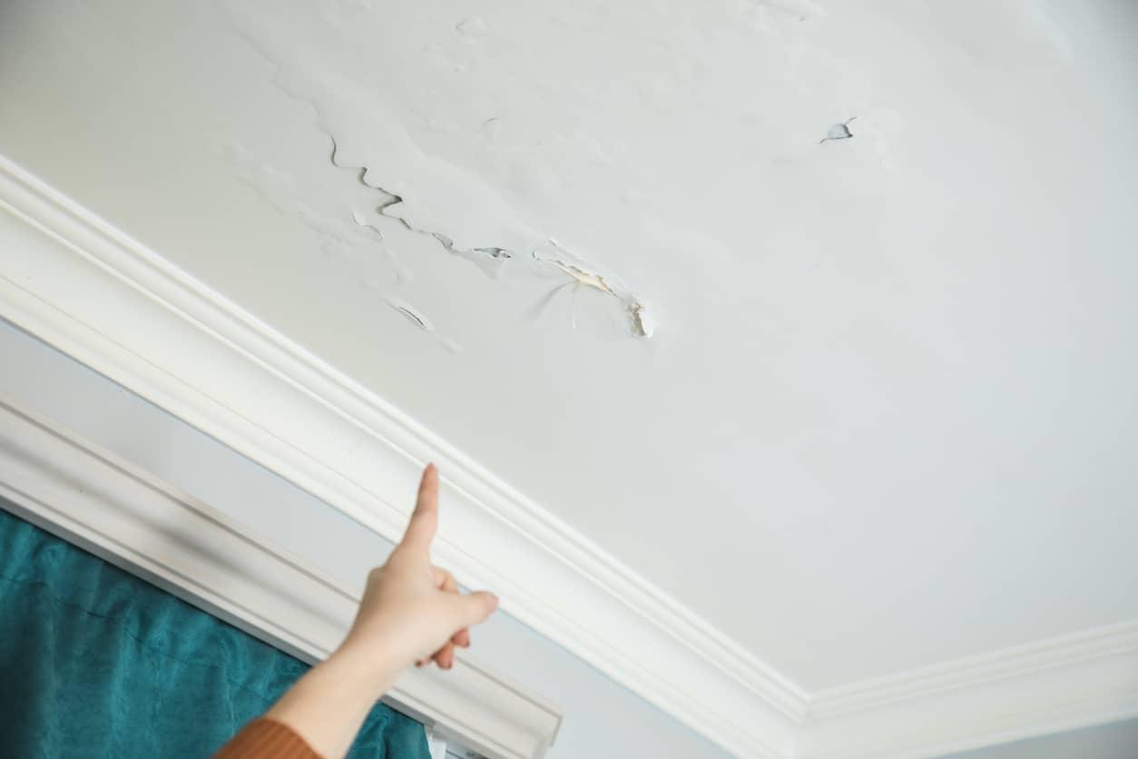 Pintar paredes con humedad