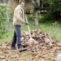 Mantenimiento del jardín: ¿qué hacer en otoño e invierno?