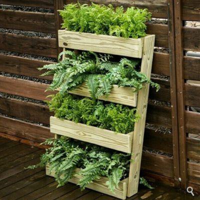 Guía para hacer un huerto en la terraza de tu casa