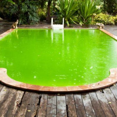 Cómo recuperar el agua de una piscina verde