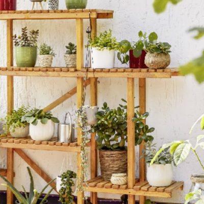 Estantería para plantas: cómo hacerla tú mismo