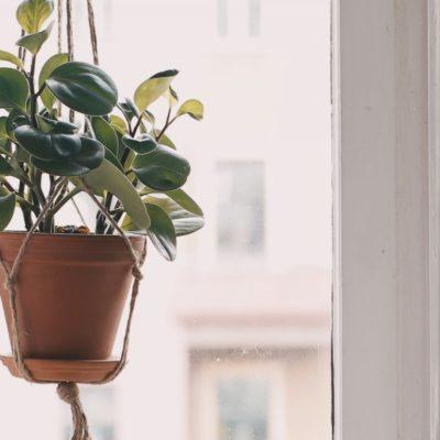 DIY: cómo hacer una maceta colgante casera tú mismo