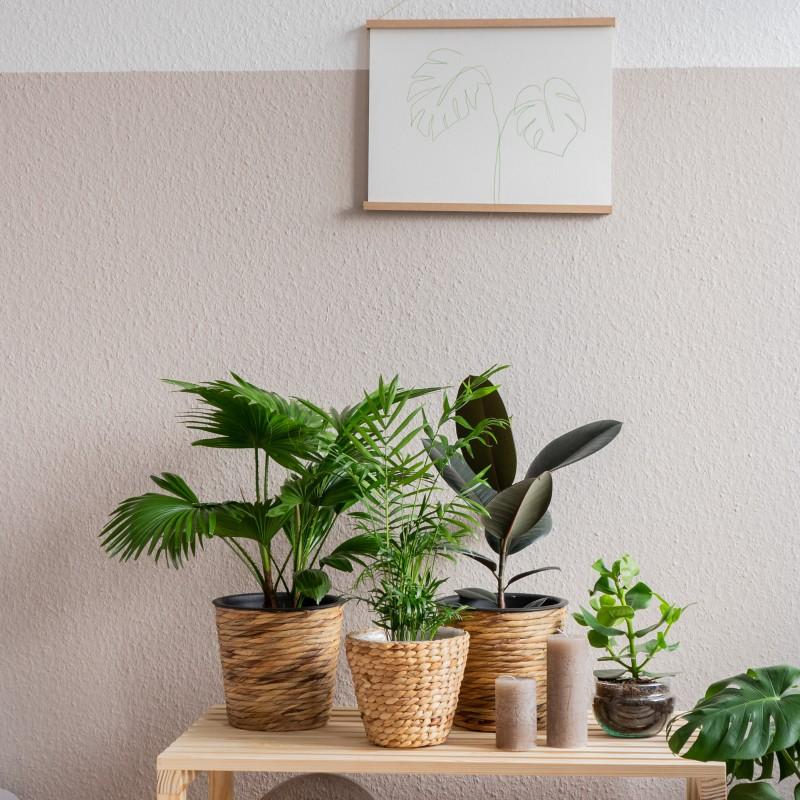 ideas decoración habitación