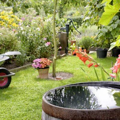 Aprende a cómo regar tu césped y gestionar el agua de riego