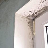 Cómo arreglar una pared con humedad y evitar que vuelva a aparecer